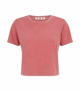 Babe Cropped T-Shirt