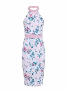 Womens **Paper Dolls Multi Coloured Floral Print Halterneck Bodycon Dress- Multi Colour, Multi Colour