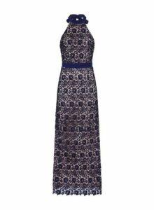 Womens **Paper Dolls Navy Lace Halterneck Maxi Dress- Navy, Navy