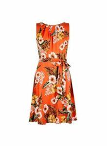Womens **Billie & Blossom Petite Orange Tropical Print Pleated Skater Dress- Orange, Orange