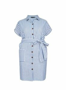 Womens **Dp Curve Blue Stripe Print Shirt Dress- Blue, Blue