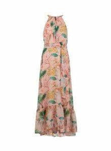 Womens **Tall Pink Tropical Print Maxi Dress- Pink, Pink