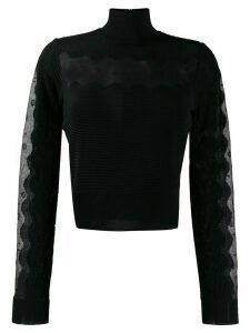 Alexander McQueen sheer panel turtleneck jumper - Black