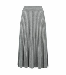 Pleated Metallic Thread Skirt