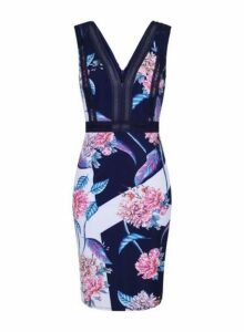 Womens **Little Mistress Navy Floral Print Bodycon Dress- Navy, Navy