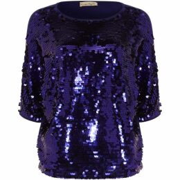 Phase Eight Alessa Sequin Panel Knit Top