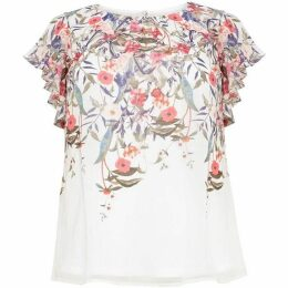 Studio 8 Patty Floral Top