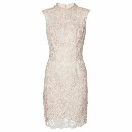 Gina Bacconi Juno Lace Dress And Chiffon Scarf