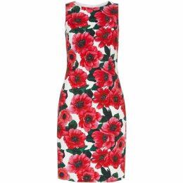 Hobbs Moira Dress