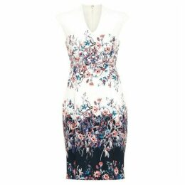 Phase Eight Dina Floral Dress