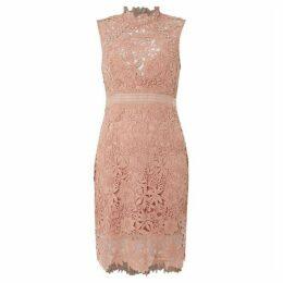 Bardot Lace panel shift dress