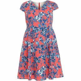 Studio 8 Martelle Printed Dress