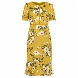 Phase Eight Hilary Floral Dress