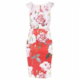 Ted Baker Saafi Iguaza Two Tone Pencil Dress