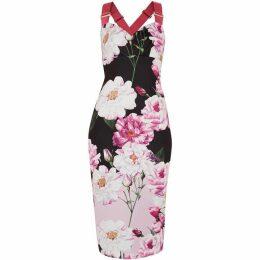 Ted Baker Angelie Iguaza Bodycon Dress