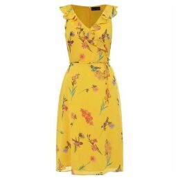 Phase Eight Joss Floral Printed Chiffon Dress