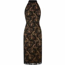 Oasis Megan Lace Dress