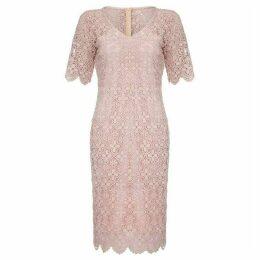 Mela London Curve Floral Lace Bodycon Dress