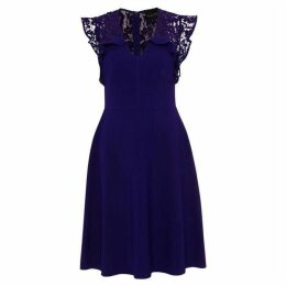 Phase Eight Macie Lace Insert Fit And Flare Dress