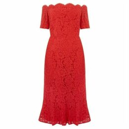 Oasis Lace Bardot Pencil Dress