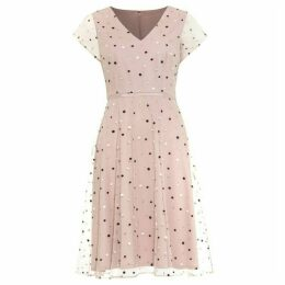 Phase Eight Leilani Spot Tulle Dress