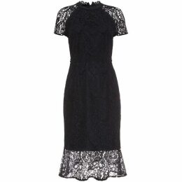Phase Eight Mabel Lace Dress