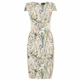 Phase Eight Katarina Floral Dress