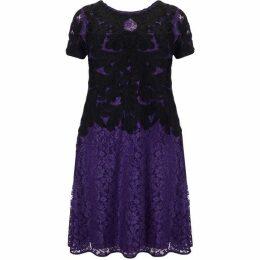 Studio 8 Plus Size Kendra tapework dress