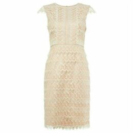 Phase Eight Ally Lace Layered Dress