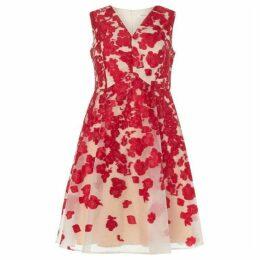 Studio 8 Jasmine Dress