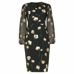 Phase Eight Sorina Printed Floral Dress