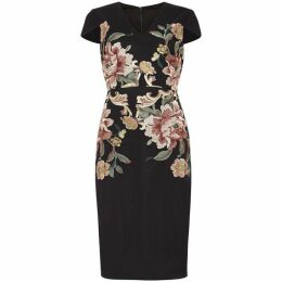 Phase Eight Nara Floral Embroidered Dress
