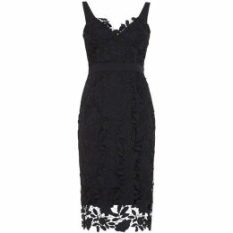 Damsel in a Dress Abella Boned Lace Midi Dress