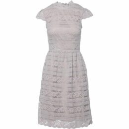 Carolina Cavour Midi Length Lace Dress With High Neck
