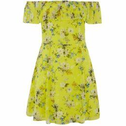 Oasis Curve Daisy Skater Dress*