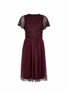 Womens **Showcase Mulberry 'Thalia' Midi Dress- Red, Red