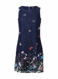 Womens *Izabel London Navy Butterfly Print Shift Dress- Blue, Blue