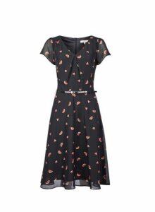 Womens **Billie & Blossom Tall Black Watermelon Print Skater Dress, Black