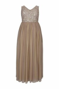 Womens Maya Curve Sequin Bodice Sleeveless Maxi Dress -  Brown