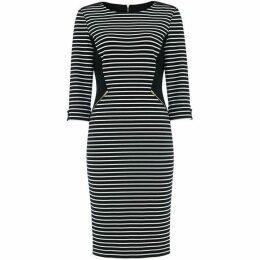 Damsel in a Dress Addison Stripe Fitted Dress