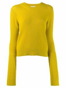 Bottega Veneta crew neck jumper - Yellow