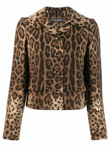 Dolce & Gabbana leopard print jacket - Brown