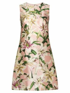 Dolce & Gabbana lily shift dress - Pink