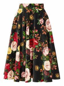 Dolce & Gabbana - Rose Print Velvet Midi Skirt - Womens - Black Multi