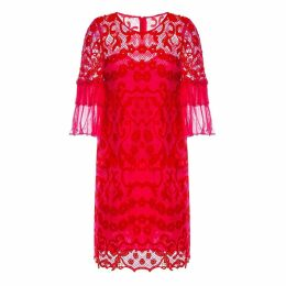 Nissa - Ruffled Sleeve Lace Dress