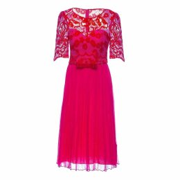 Nissa - Lace Sleeve Dress With Pleated Skirt