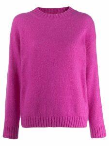 Laneus round neck jumper - Purple