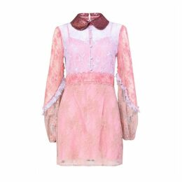 True Decadence True Decadence Pink Lace Collared Mini Dress