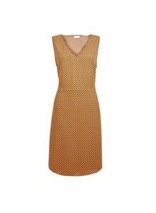 Womens **Vila Brown V-Neck Polka Dot Print Shift Dress, Brown