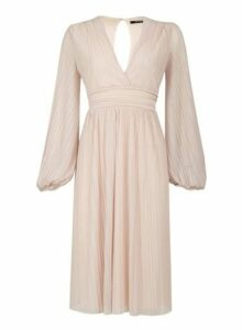 Womens *Tfnc Nude Long Sleeve Midi Skater Dress- Nude, Nude